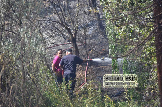 Πυρκαγιά στα Πυργιώτικα - Κινδύνεψε το σπίτι της αδελφής της προέδρου του ΠΑΣΟΚ Φώφης Γεννηματά (βίντεο)