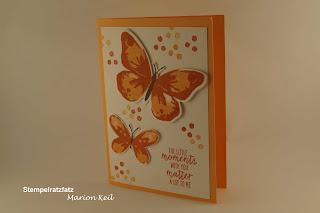 """Karte """"Nur ein Stempelset"""" Schmetterling mit Stampin´ Up!"""
