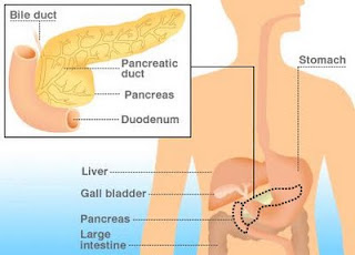 Natural Home Remedies For Pancreatic Cancer