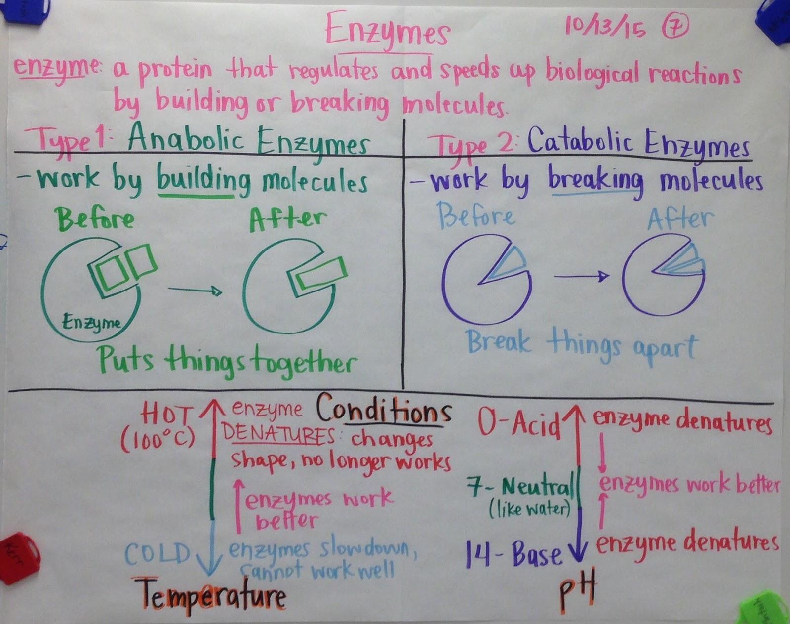 Scientific Gladiators Chart Examples