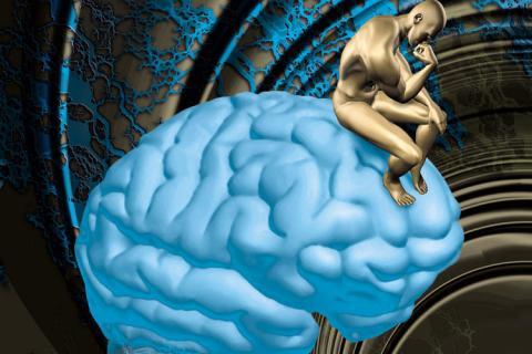 Resultado de imagem para complexo ser humano