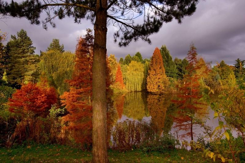paisaje jardines otoño en Inglaterra