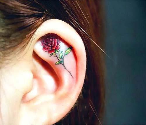 ear rose tattoo kulak içi gül dövmesi