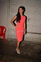 Pooja Hegde ~  Exclusive 038.JPG