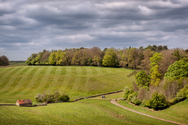 Landscape photograph of the Hatherop Estate with trees in spring bloom