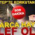 Gaziantep'te 100 koyun telef oldu