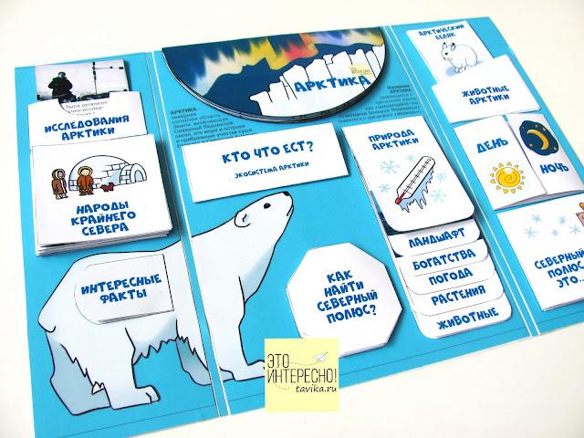 """Лэпбук """"Арктика"""" для детей 5-10 лет"""