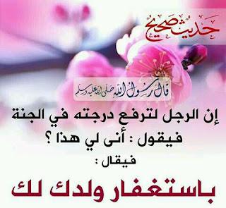 تحميل اجمل الصور الاسلامية  الصور الاسلامية فيس بوك  اجمل الصور الاسلامية المتحركة  خلفيات دينيه معبره  اجمل الصور الاسلامية في العالم  اجمل الصور الاسلامية المعبرة  خلفيات اسلامية رائعة  اجمل الصور الاسلامية والدينية