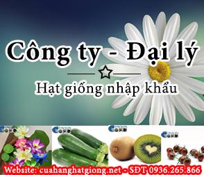 Cửa hàng bán hạt giống online