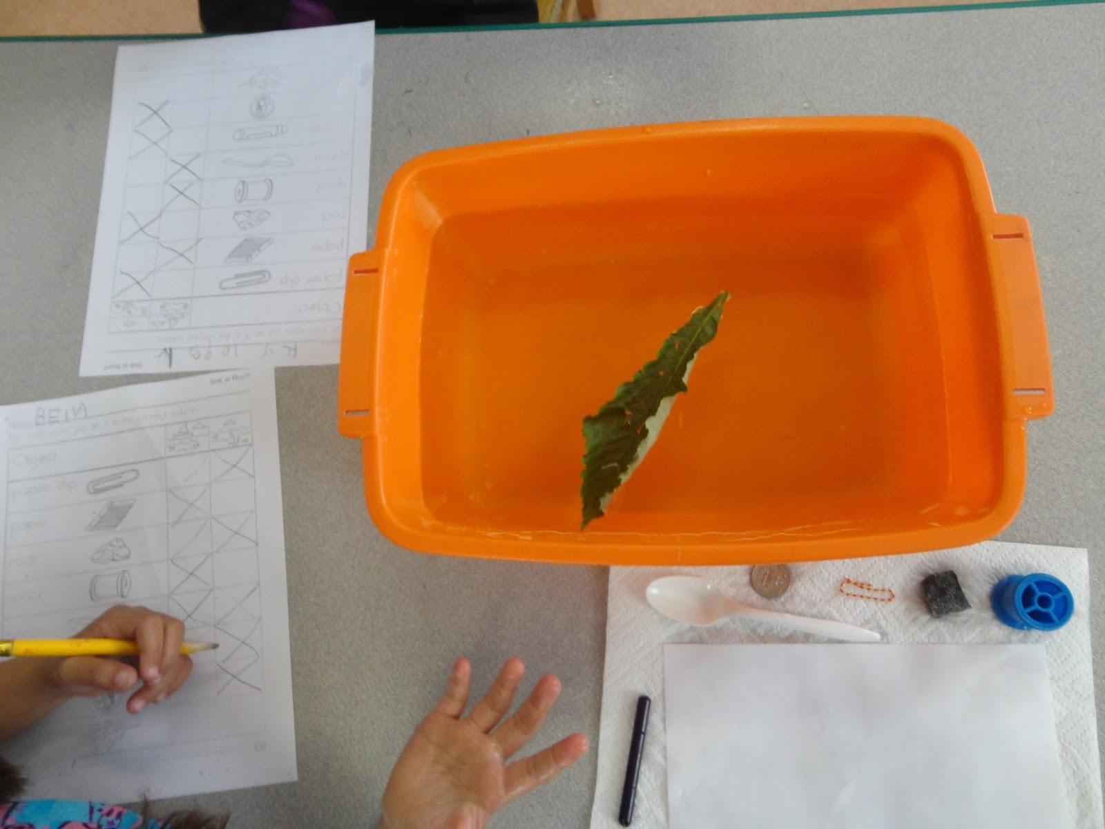 My Catch A Star Classroom Sink Vs Float