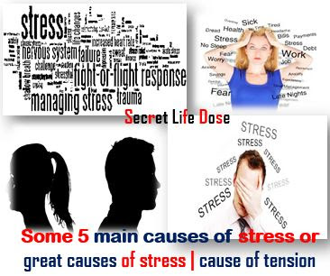 Some 5 main causes of stress or great causes of stress | cause of tension,secret life dose