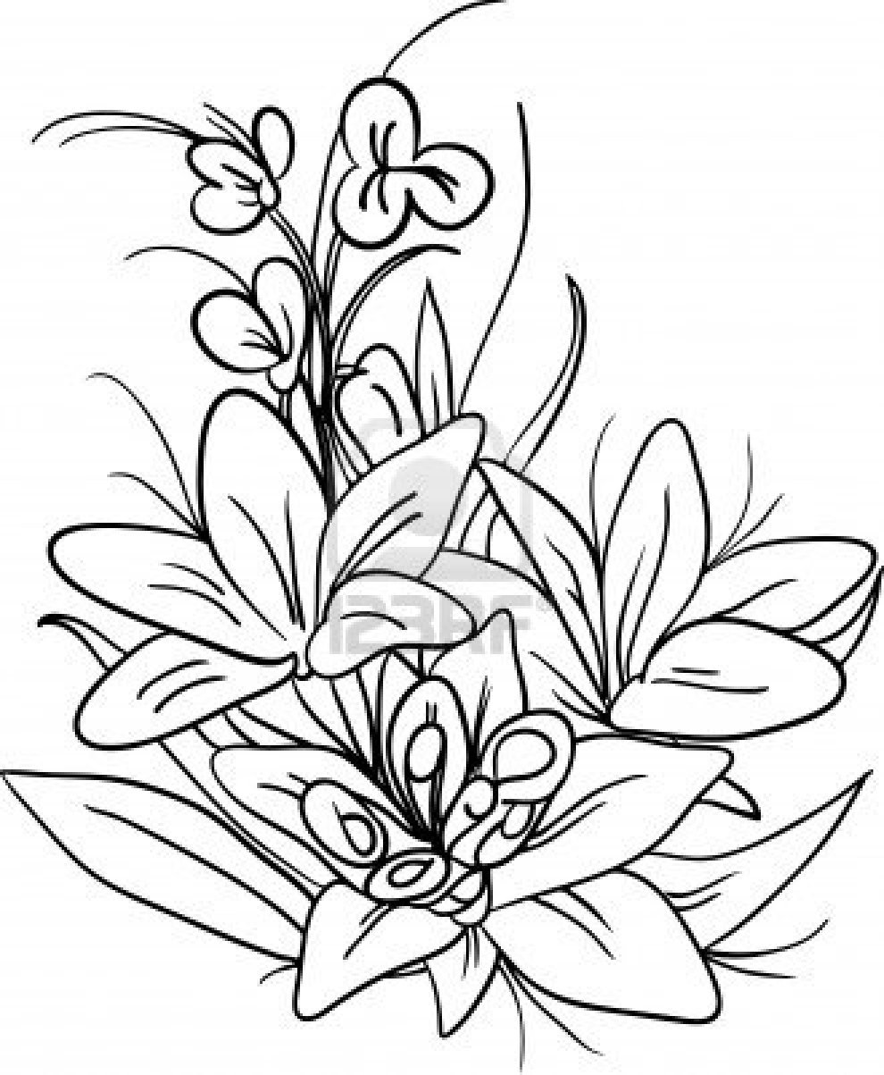 Flower Dibujo: Sunbeamflowers: Flowers Outlines