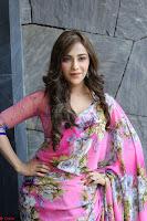 Angela Krislinzki Rogue Movie Fame Telugu Actress in Saree Backless Choli 117.JPG
