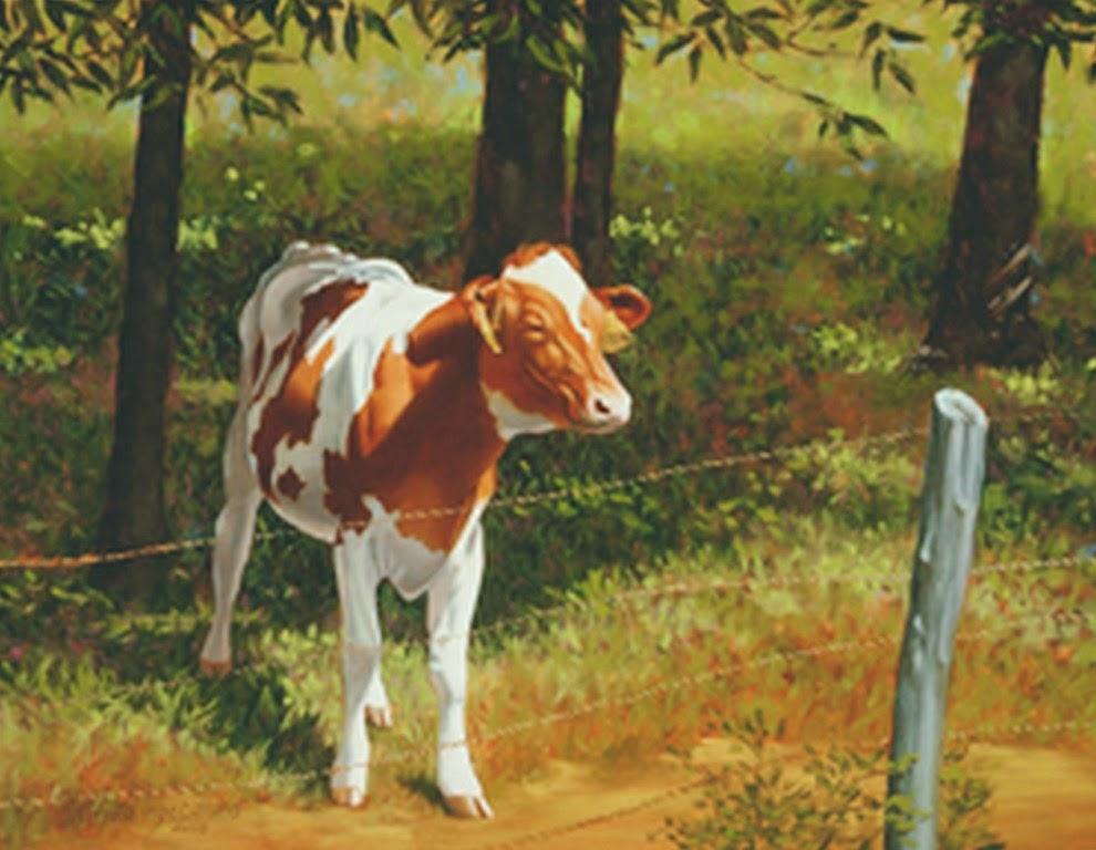 Cuadros Decorativos De Vacas