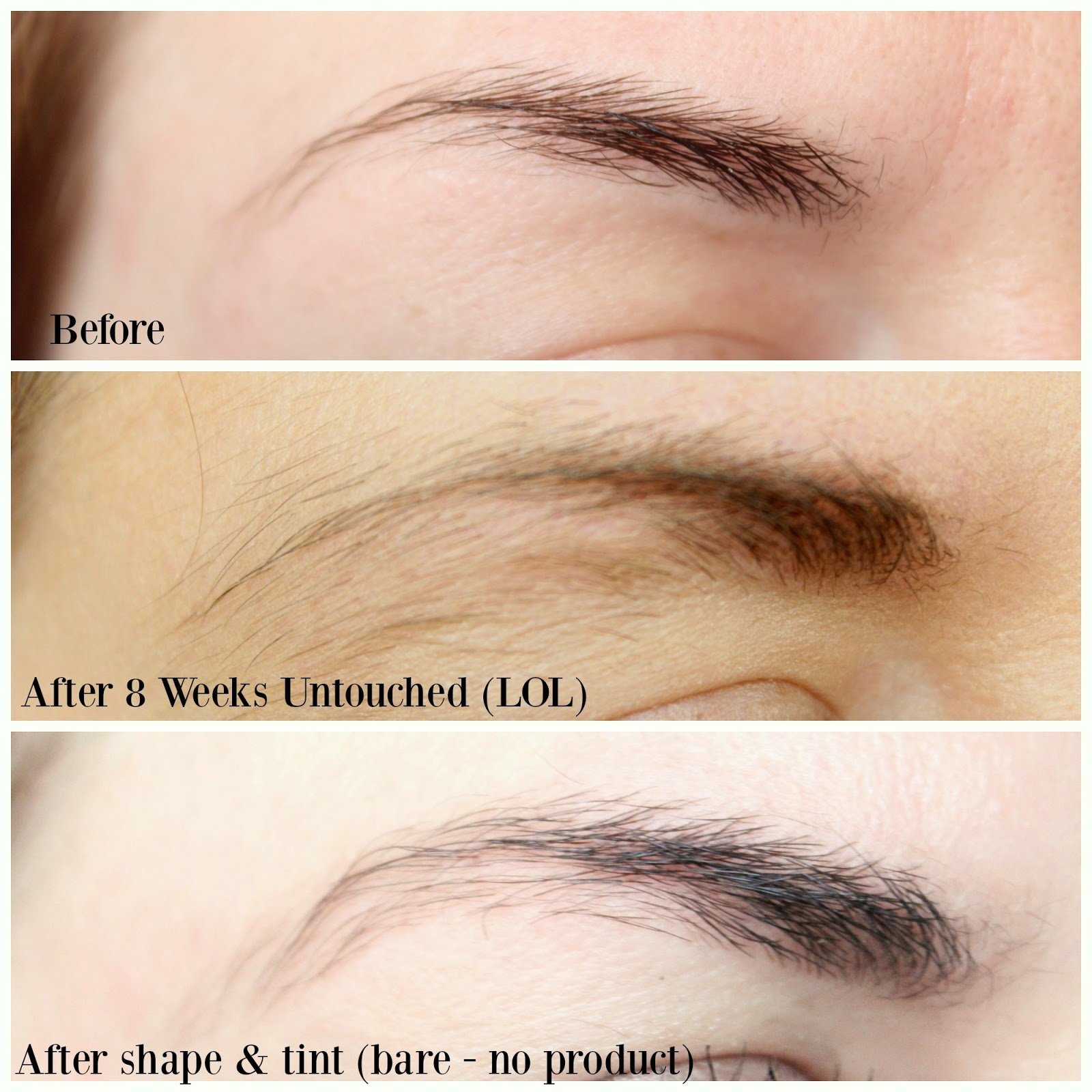 Rapidbrow 8 Week Trial Its Kt