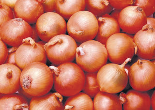 Central Government Banned Export of Onions