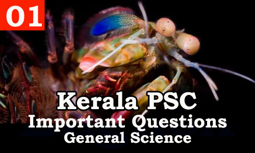 Kerala PSC - Important and Repeated General Science Questions - 01