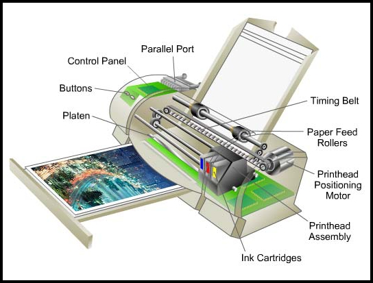 Inilah Bagian Bagian Printer Dan Fungsinya Pembahasan Lengkap Bisa Komputer