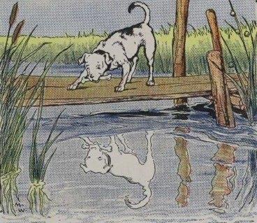 fabula el perro y su reflejo