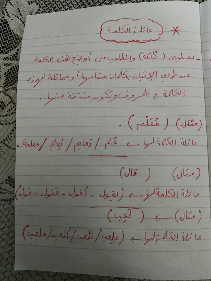 مراجعة القواعد النحوية والتراكيب للصف الثاني والثالث الابتدائي مستر إسلام سمك 12