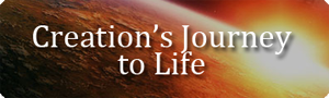 Creation's Journey to Life