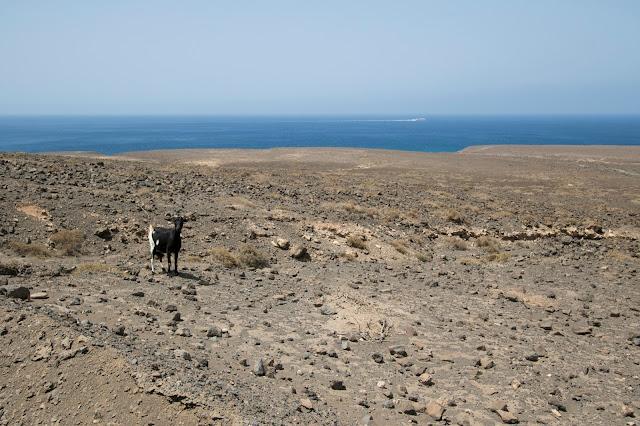 Spiaggia di Cofete-Fuerteventura