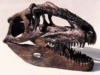 Dinosaur Hoax - Dinosaurs Never Existed! Model