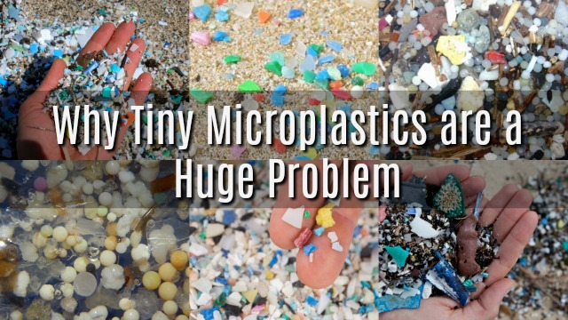 Why Tiny Microplastics are a Huge Problem