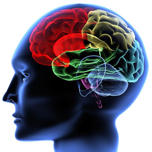 Ο έλεγχος του εγκεφάλου σε εφήβους μπορεί να προβλέψει ποιοι θα μπλέξουν με τα ναρκωτικά