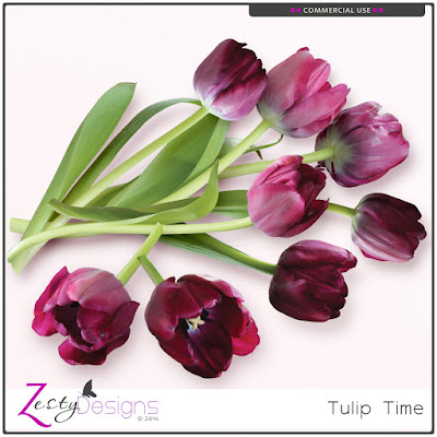 https://www.digitalscrapbookingstudio.com/commercial-use/elements/cu-tulip-time/