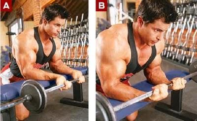 تمارين عضلات الباى للمبتدئين