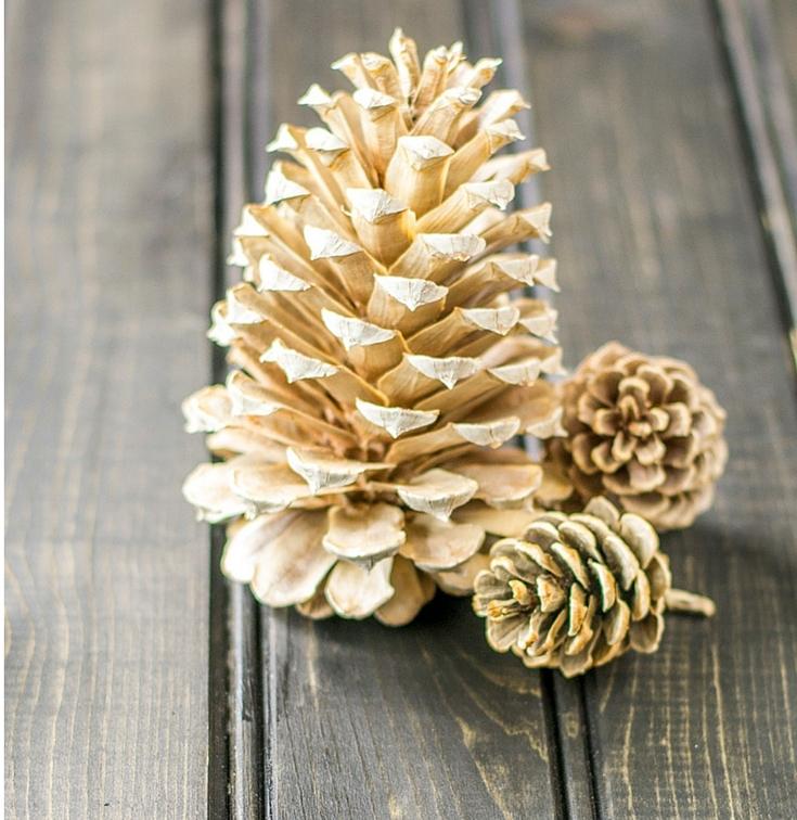 Simply%2BMagical%2BDIY%2BPinecones%2BIdeas%2B%252810%2529 30 Simply Magical DIY Pinecones Ideas Interior