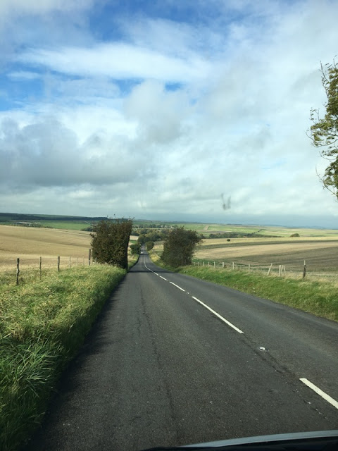 road across farm fields,with blue sky in the distance