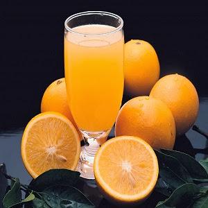 pret storcator profesional electric de portocale