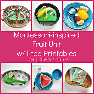 Montessori-inspired fruit learning activities with free printables.