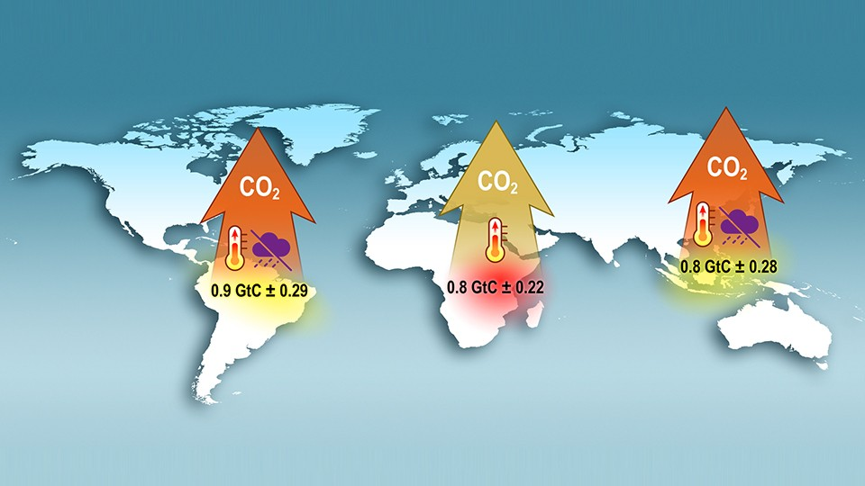 UNUSUALLY LARGE AMOUNTS OF CARBON DIOXIDE (REPORTED HERE IN GIGATONS) WERE RELEASED FROM THE TROPICS DURING THE 2015 EL NIÑO. | Source: NASA/ JPL/ CALTECH