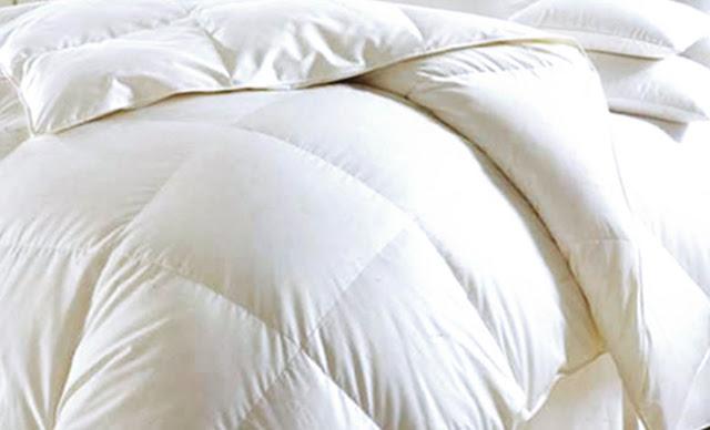Ruột chăn bông khách sạn Golden Silk