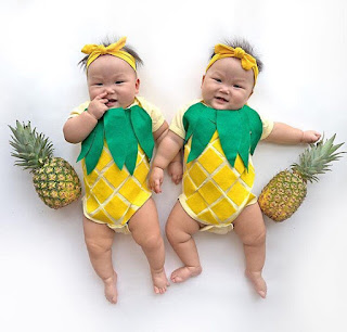 twin babies pineapple costume