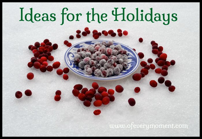 Sugared Cranberries