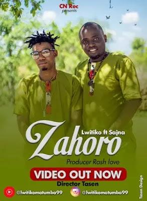Download Video | Lwitiko ft Sajna - Zahoro