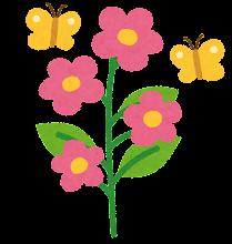 花の成長過程のイラスト6