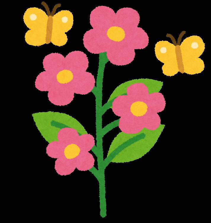 花の成長過程のイラスト かわいいフリー素材集 いらすとや