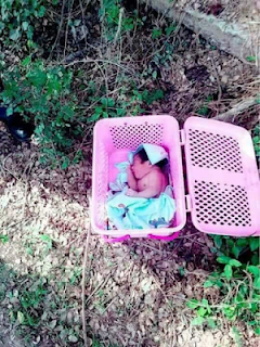 Abandoned New Born Baby Found In A Basket On The Street 2