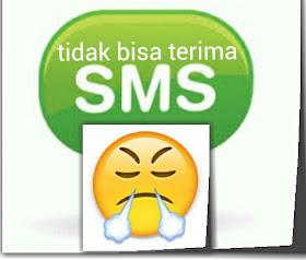 cara paling baru mengatasi hp android tidak bisa menerima sms