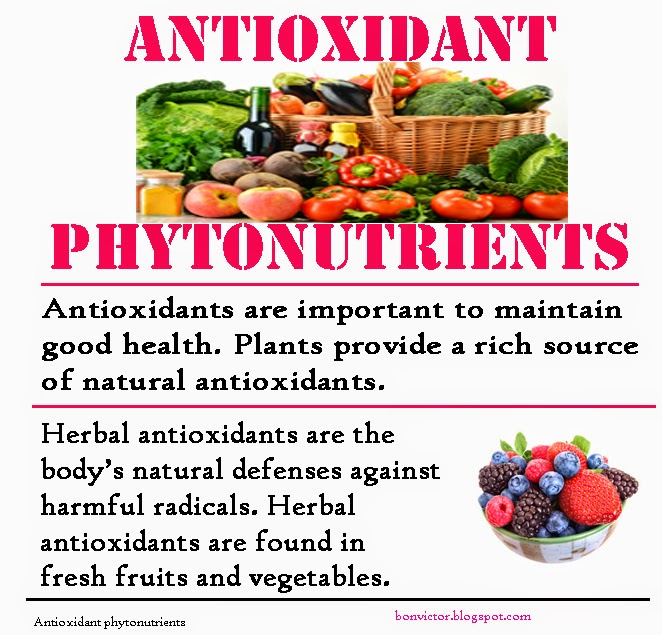 High Phytonutrient Foods
