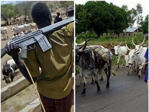 Suspected Fulani herdsmen kill 'okada' rider, six farmers in Delta