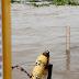 Rio Madeira pode ultrapassar os 17 metros e Guajará-Mirim está em Estado de Alerta