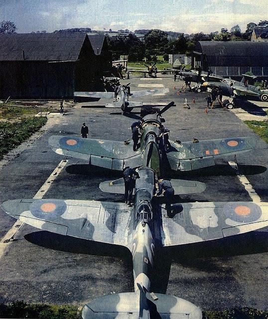 Seafire F4F Wildcat F4F Martlet Hawker Hurricane worldwartwo.filminspector.com