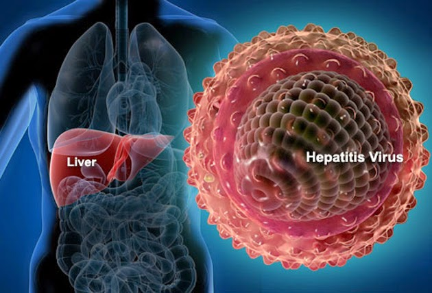 En Hora Buena Descubren antialérgico que cura la hepatitis C