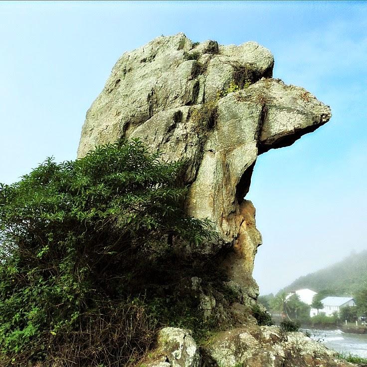 Bico do Papagaio: atrativo de Itajaí